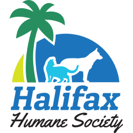 logo_HHS.png