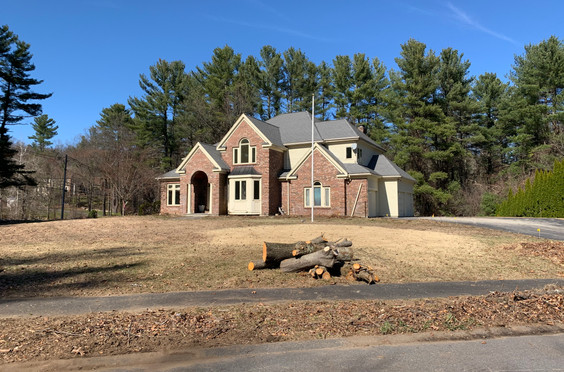 Tree removal by Marquis Tree Service