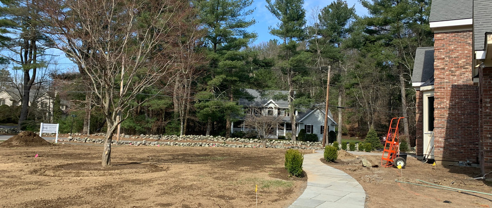 Completed Bluestone Walkway and new plantings.