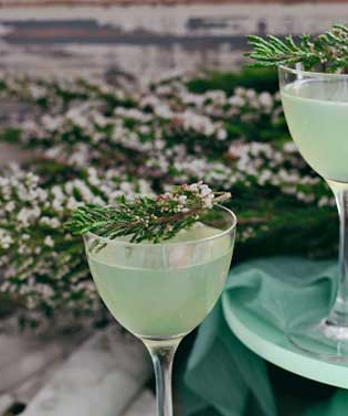 The Last Word, a classic gin based prohibition-era cocktail.