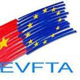 12 Vietnam EU EVFTA.jpg
