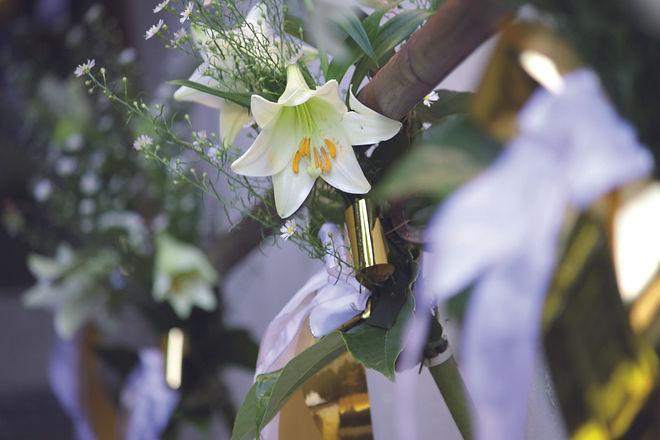 Blumen Gruber 12.jpg
