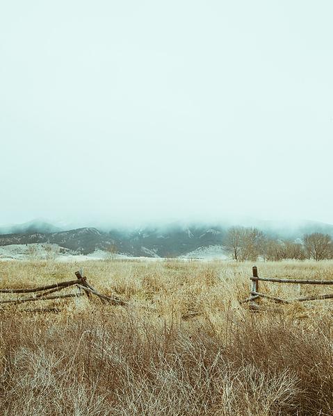 Stock Image Dry Fields