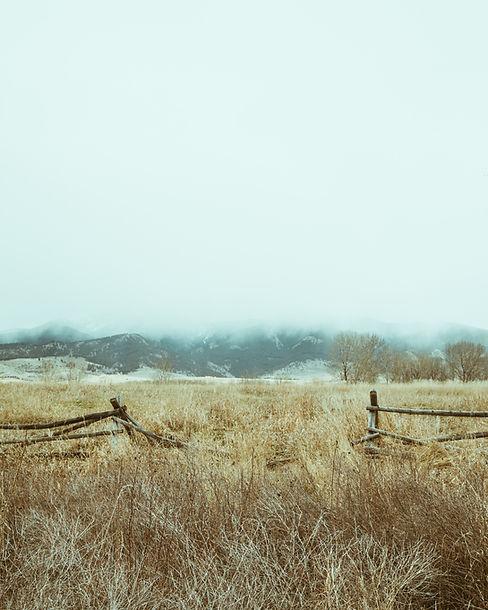 Dry Fields