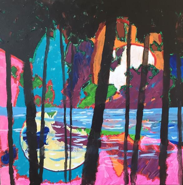 Clair de lune au lac Enragé