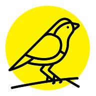 Birds_sml.jpg