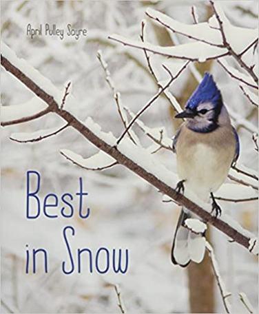 Best in Snow by April Pulley Sayre.jpg