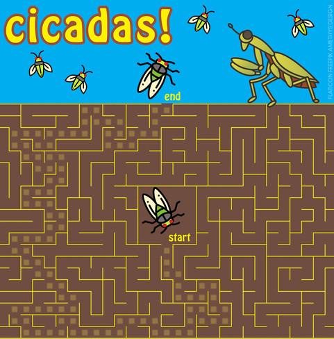 Cicada maze_puzzle_solution.jpg