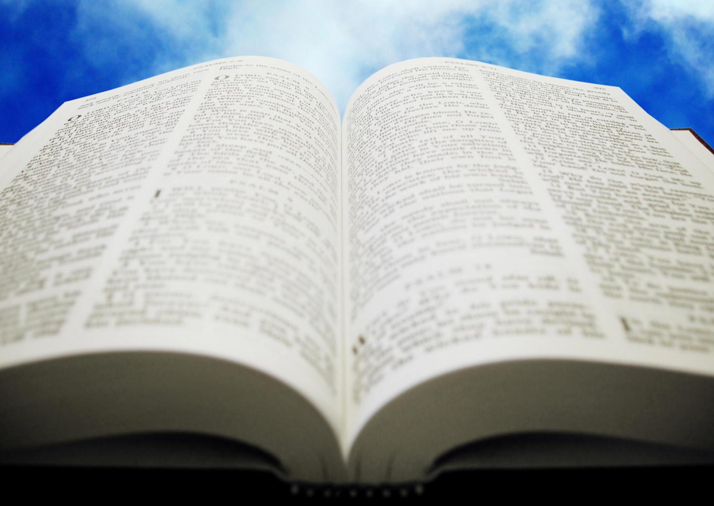new+web+bible.jpg