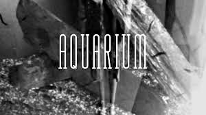 AQUARIUM ////////////////  Banc-Titre  Recherche Typographique  Image & Conception Graphique  Court-Métrage Expérimental /////////////////////////////////////  Stéphanie Carraro, l'Atelier de La Paloma Blanche.