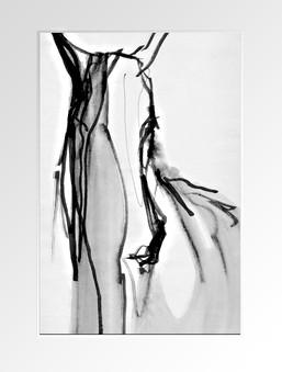 CHEVAL ////////////////////////////  Croquis / Sketch  Lavis & Feutre sur papier 10X15 cm  Carnet Moleskine  ////////////////////////////  Stéphanie Carraro, l'Atelier de La Paloma Blanche.