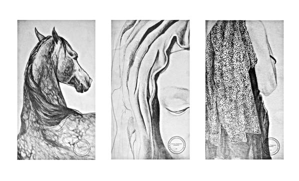 stephanie carraro //// dessins - etudes tout medium