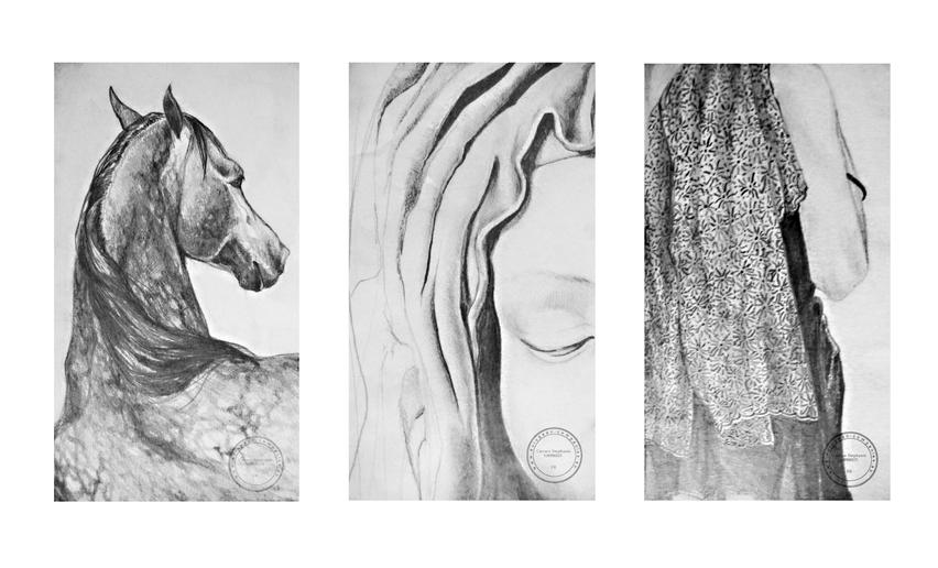DESSINS D'ÉTUDE  //////////////////////////  Mine de Plomb  sur papiers à grain,  1/2 Raisin ///////////////////////////////////  Stéphanie Carraro, l'Atelier de La Paloma Blanche.
