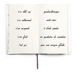 CARNET  DE CALLIGRAPHIE  //////////////////////////  Typographie manuscrite  Texte imprimé sur carnet  /////////////////////////////////  Stéphanie Carraro, l'Atelier de La Paloma Blanche.