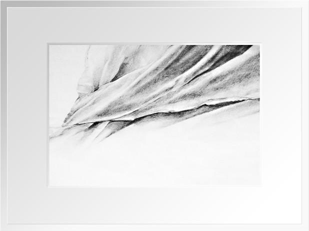 DESSIN D'ÉTUDE  ////////////////////////  Mine de Plomb  sur papier à grain,1/2 Raisin ///////////////////////  Stéphanie Carraro, l'Atelier de La Paloma Blanche.