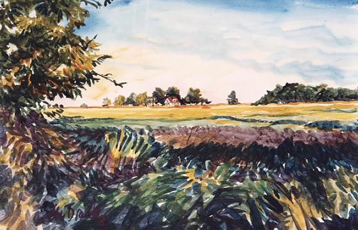 376 Sedalia Farm