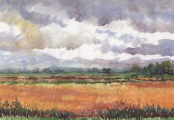394 Mcbane Fields
