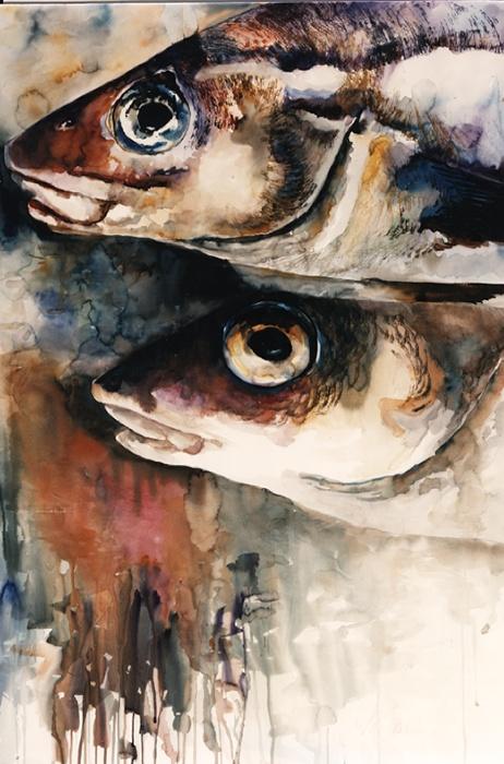426 Fish Heads