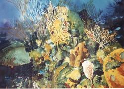 550 Under Water