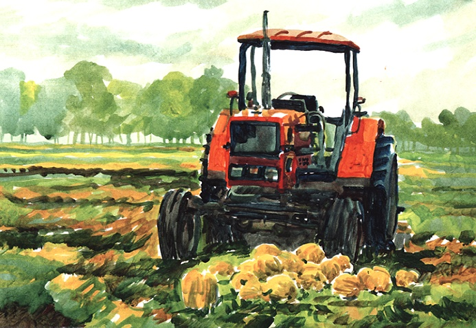 401 Hartsburg Pumpkins