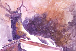 166 Tower Grove Elk