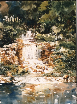 145 Forest Park Falls