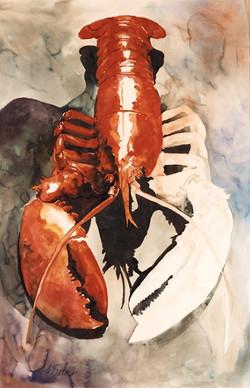 425 Lobster