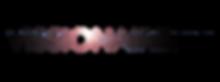 Vissionaireum_Logo_For_Light_Background_