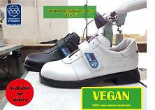 Vegans 1.jpg