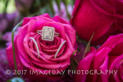 Rings on a rose, Nassau