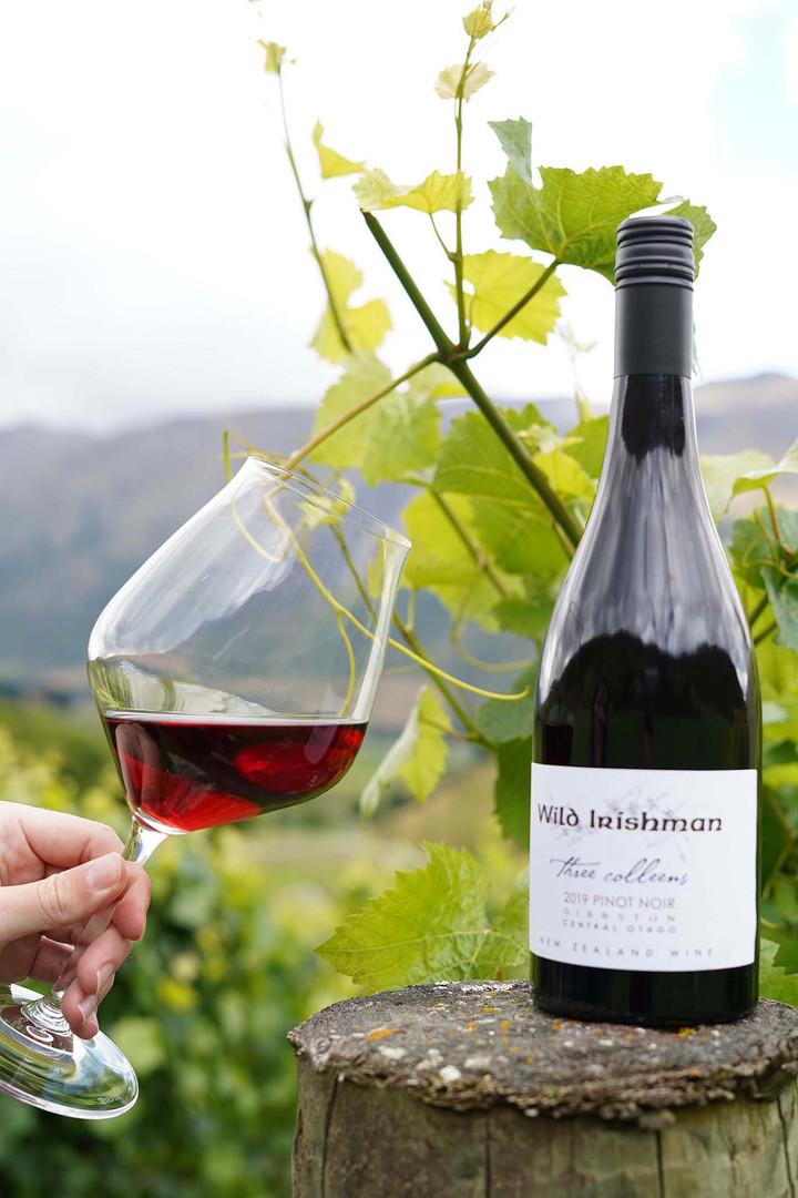 2019 Pinot Noir.JPG