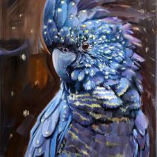 Obraz Papouška