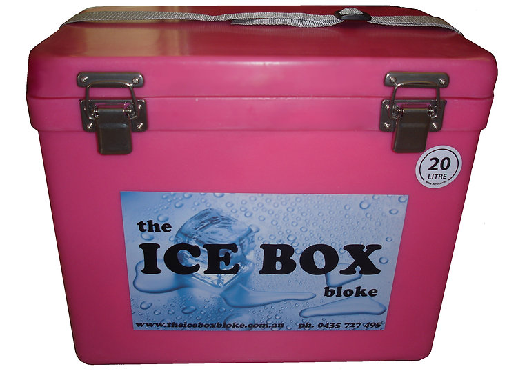 20 Litre Ice Box with Carry Handle (Pink)