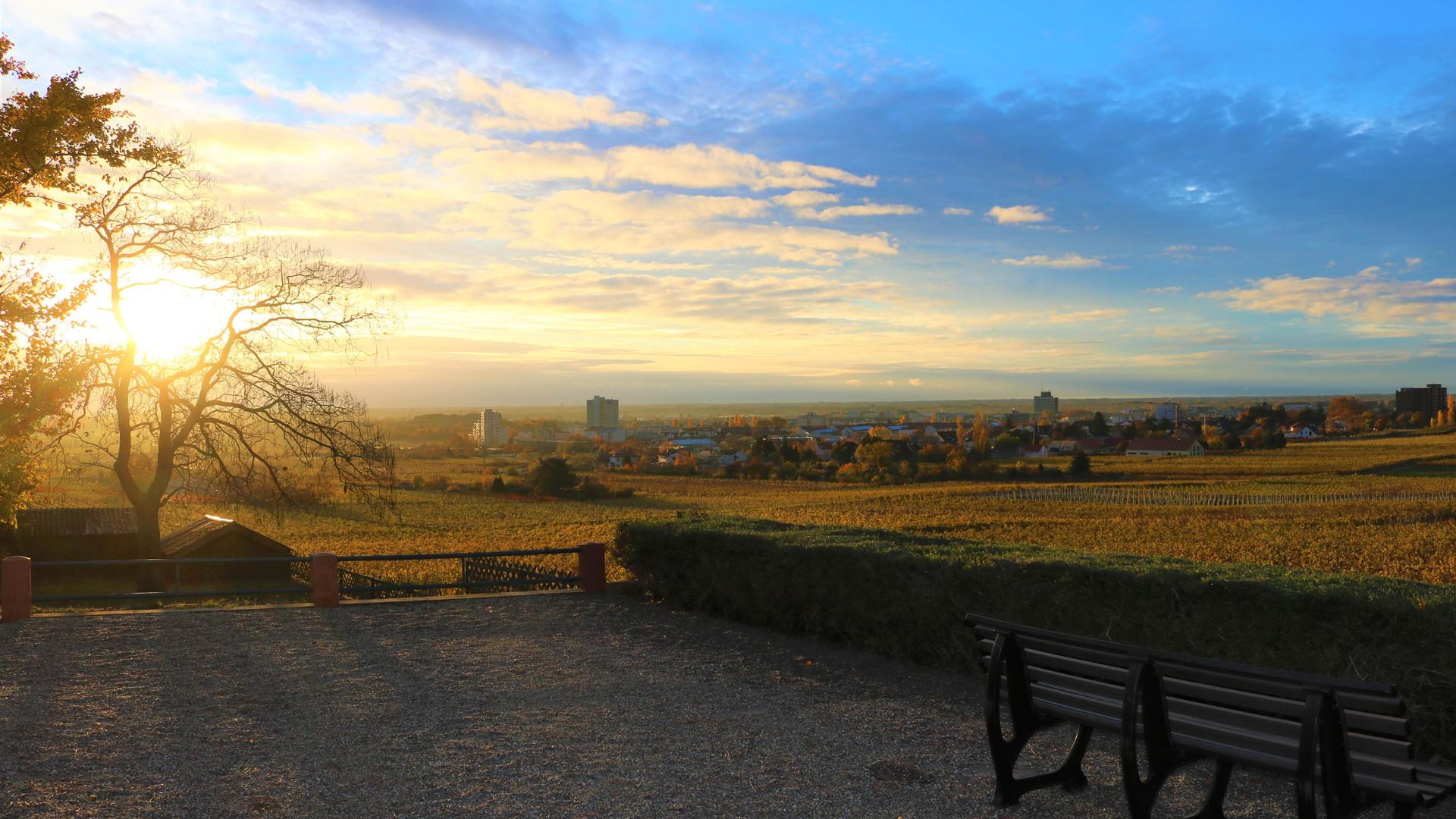 Die Aussicht von unserer Panorama Terrasse