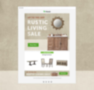 Rustic Living Sale with BG.jpg