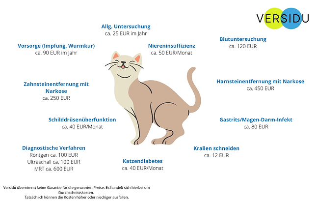 Katze kosten.png