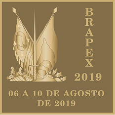 Brapex-Verso.PNG