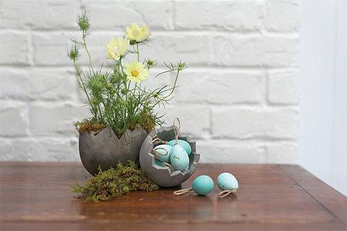 Robin Eggs