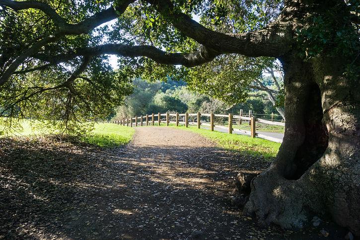Rancho San Antonio Open Space.jpg