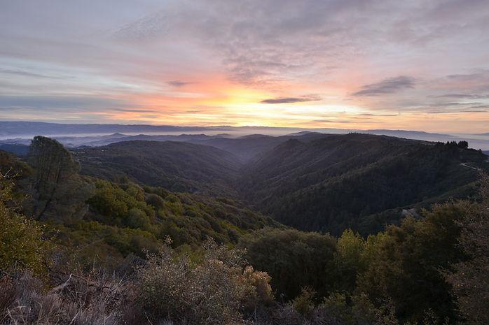 20140128_CA_Upper Uvas Canyon_Sunrise_SP
