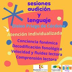 sesiones audición y lenguaje.png