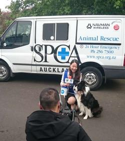 SPCA - Annual Street Appeal
