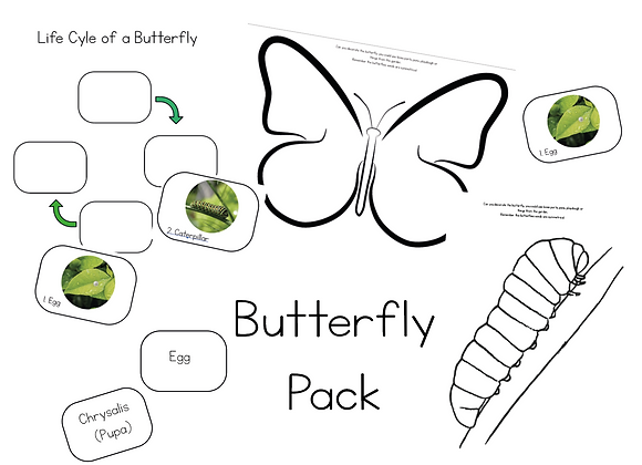 Butterfly learning pack