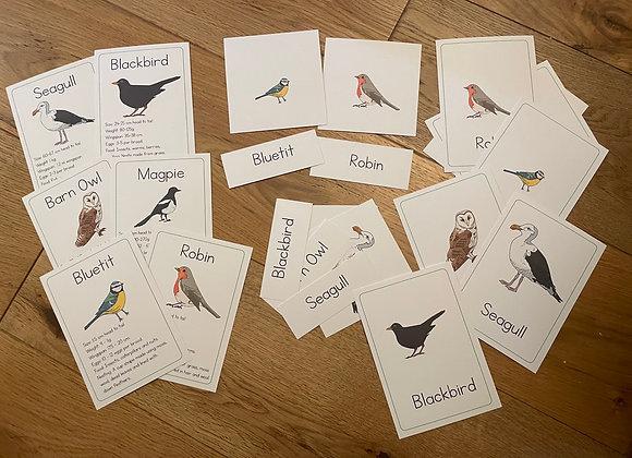 Printed British Birds set