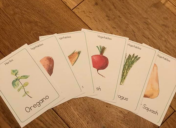 Printed vegetable identification cards