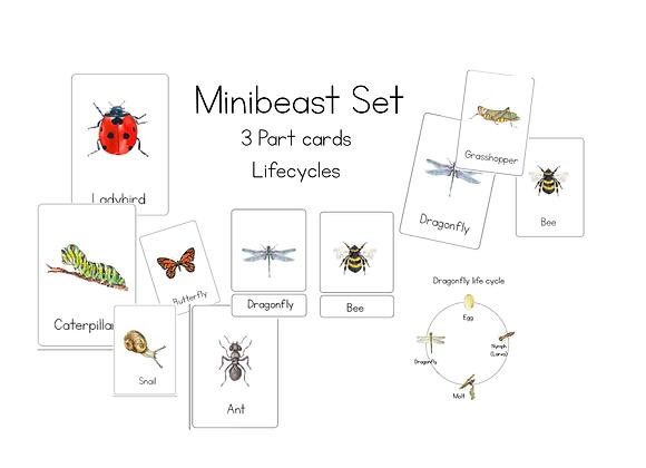 Minibeast set