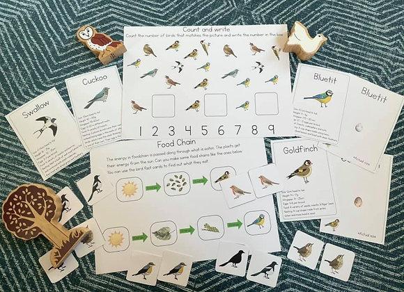 Older children (6+) Birdlife learning set