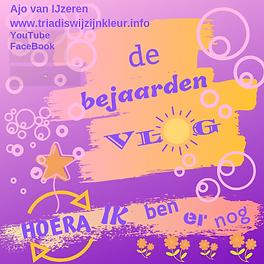 BejaardenVlog met FB.png