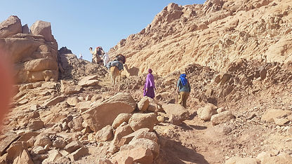 Sinai dec.2019.jpg