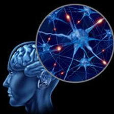 Brain Gym 101 Class - December 7, 8, 9, 10, 11, 12, 2020